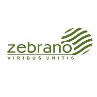 производитель Zebrano