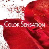 Color Sensation, серия Производителя GARNIER
